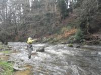 Pêche le 25-03-17 (14)